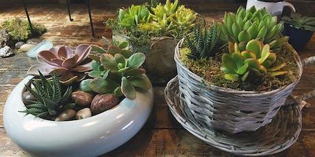 Succulent Dish Garden tickets