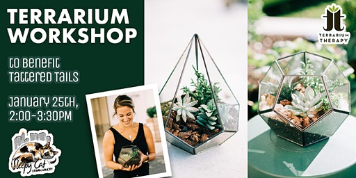 Terrarium Workshop to Benefit Tattered Tails