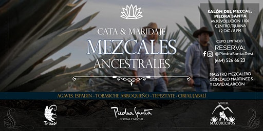 Cata / Maridaje Mezcal Macurichos