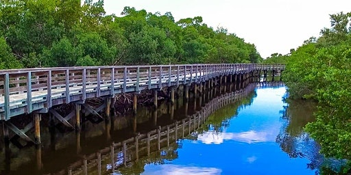 Sarasota Bay Guardians: Robinson Preserve Volunteer Planting