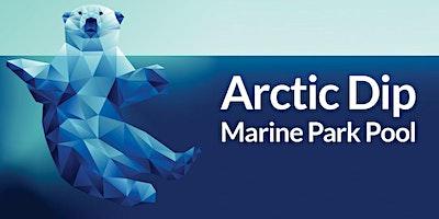 City of Fort Worth Arctic Dip- Marine Park Pool