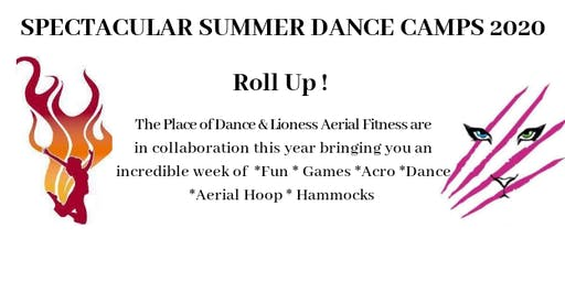 Spectacular Summer Circus/ Dance Camp 2020 - Ages 9-11