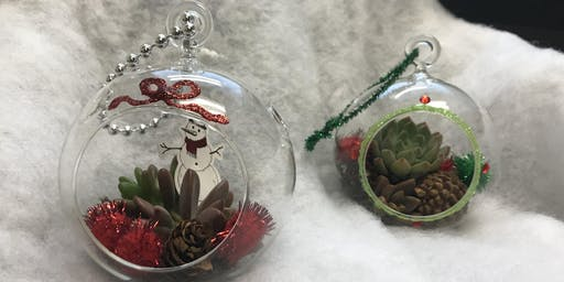 Succulents & Sips:  Holiday Ornament Craft Party