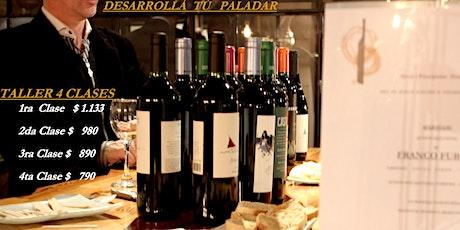 Clase* Degustación Vinos Tintos 12 Etiquetas Diferentes. entradas