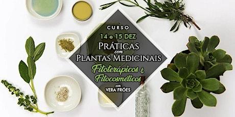 Curso de Práticas com Plantas Medicinais - fitoterápicos e fitocosméticos ingressos