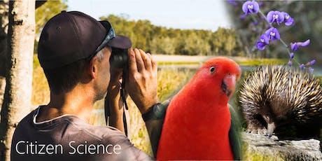 Love Nature Citizen Science Workshop - Night Stalk & Talk tickets