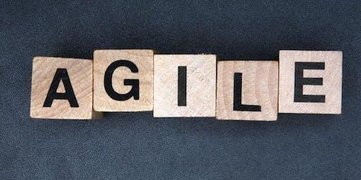 Être et Agir en leader agile
