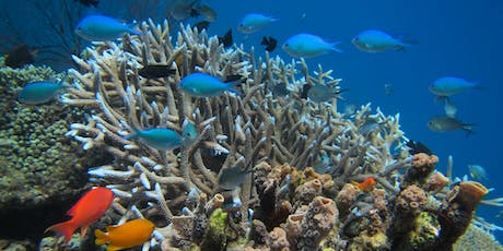 Citizen Science Workshop - Reef Health tickets