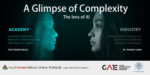 A glimpse of complexity, the lens of AI