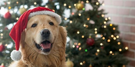 Doggy Christmas Pawty tickets