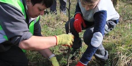 Plant a tree at Broadwood Loch tickets