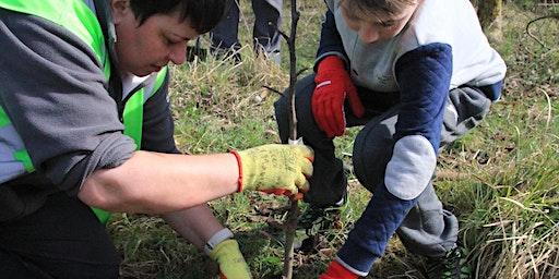 Plant a tree at Broadwood Loch