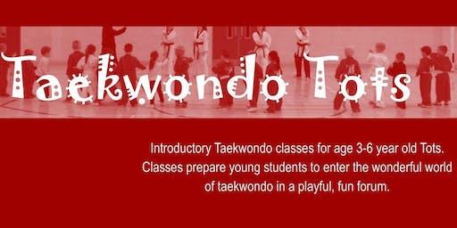 Taekwondo Tots - 2020 - Term 1