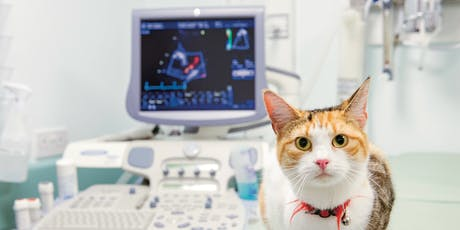 Echocardiography Training tickets