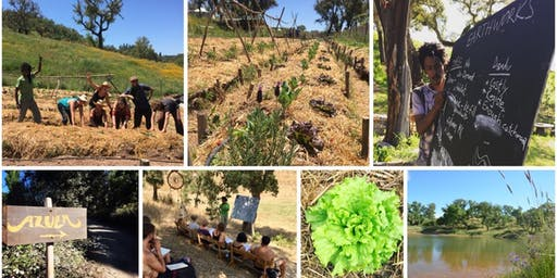 Organic Gardening: The Permaculture Way at Azula Portugal 19th - 27th April