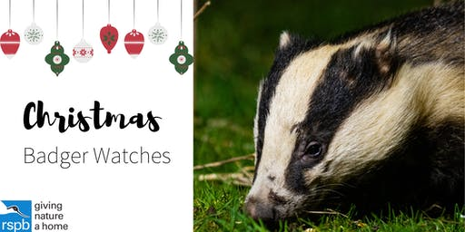 Christmas Badger Watches