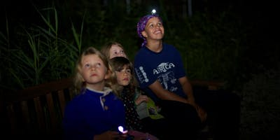 RSPB Guided Bat Walk