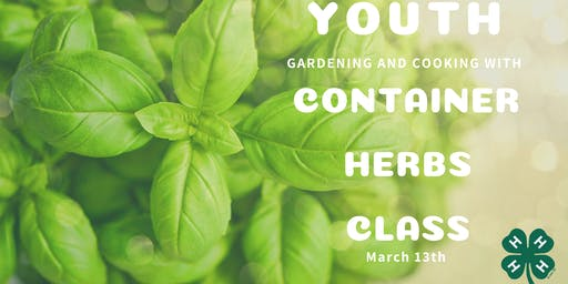 Gardening and Cooking: Youth Container Herbs