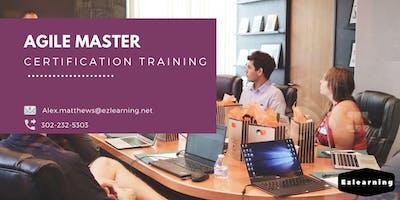 Agile & Scrum Certification Training in Lakeland, FL