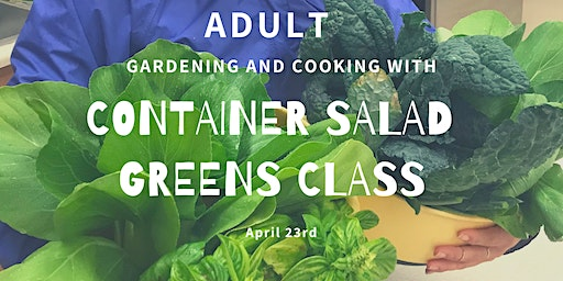 Gardening and Cooking: Adult Container Salad Greens