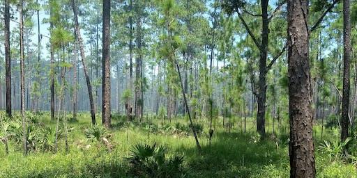 Florida Land Steward Workshop: Longleaf Pine Forest Restoration and Management