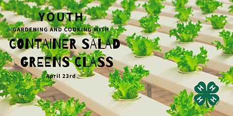Gardening and Cooking: Youth Container Salad Greens tickets