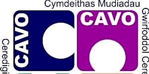 Sesiwn Gwybodaeth a Rhwydweithio - Information and Networking Session