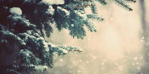 Winter Solstice Meditation- FREE