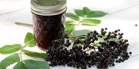 Elderberry Syrup and  Herbal Immunity Workshop tickets