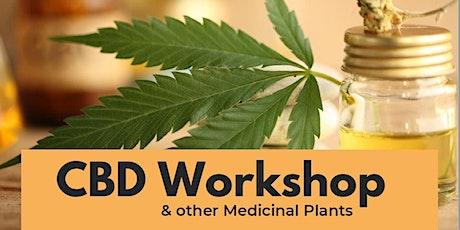 CBD Workshop & other Medicinal Plants tickets