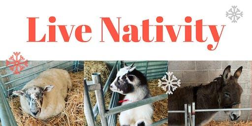 Armagh Live Nativity 2019
