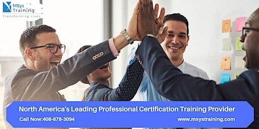 CAPM (Certified Associate In Project Management)Training in Philadelphia,PA