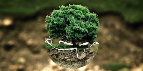 Inquinamento del suolo: sfide e opportunità del biorisanamento biglietti