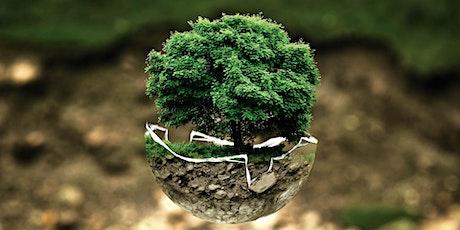 Inquinamento del suolo: sfide e opportunità del biorisanamento tickets
