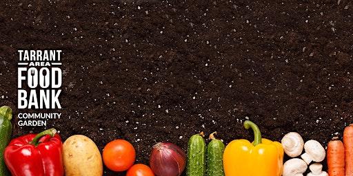 Kitchen Garden Cooking School - Food Preservation Series