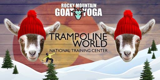 Goat Yoga - January 12th (Trampoline World Gymnastics)