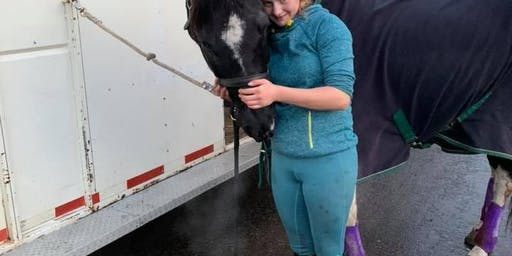Beginner Horsemanship Clinic