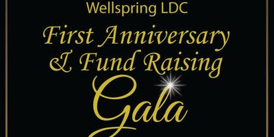 Wellspring LDC First Anniversary & Fundraising Gala