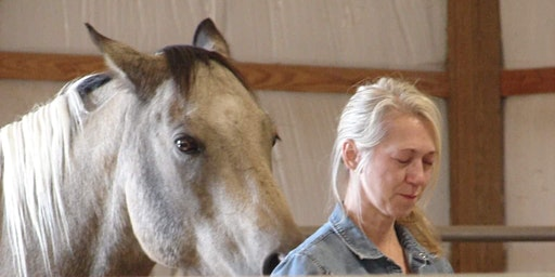 Equine Guided Women's Empowerment Group