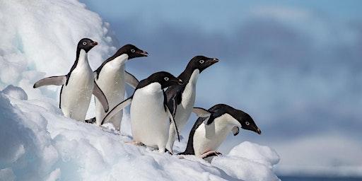 Merit Travel  Sudbury Presents Quark Polar Expeditions at the IMAX