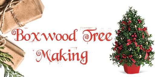Mommy & Me Boxwood Tree Making Class