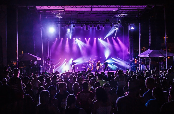 Blame My Roots Fest 2020 image