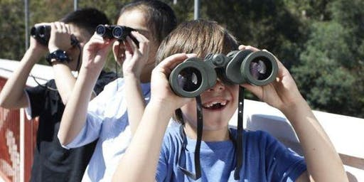 Bush Kids 2 January 2020 - Aireys Inlet