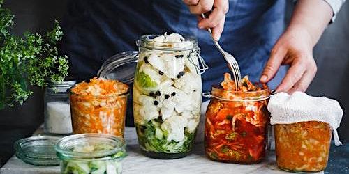 Gut Health Master Class- Home Fermentation for Beginners 22