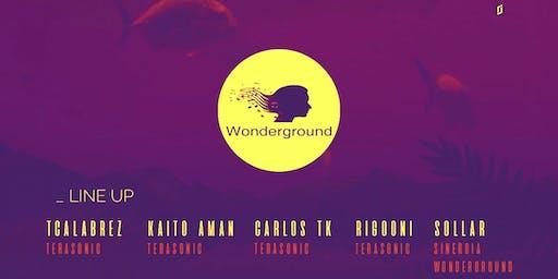 Wonderground 29.02.20