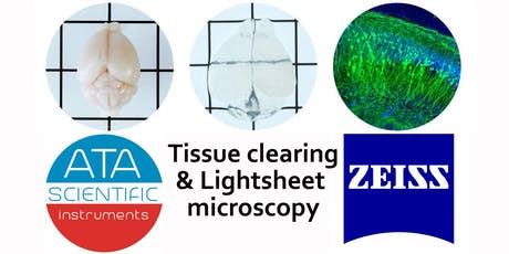 Accelerate your 3D Imaging Workflow: Tissue clearing and Lightsheet imaging tickets