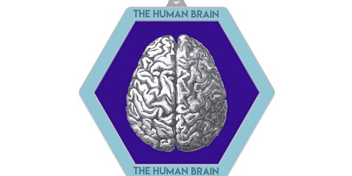 2020 The Human Brain 1M 5K 10K 13.1 26.2 – Columbus