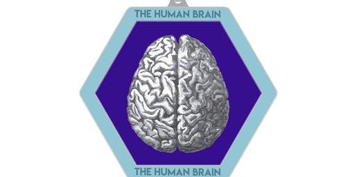 2020 The Human Brain 1M 5K 10K 13.1 26.2 – Houston