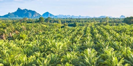 Palm Oil: A Business Case for Sustainability tickets