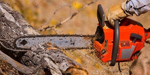 Level 2 Award in Chainsaw maintenance and cross-cutting